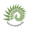 florariumplants