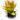 Billbergia amoena red empress