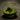florarium-terrarium-107