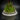 florarium-terrarium-126